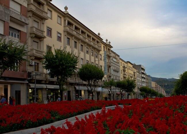 Mass Flower Display in Braga