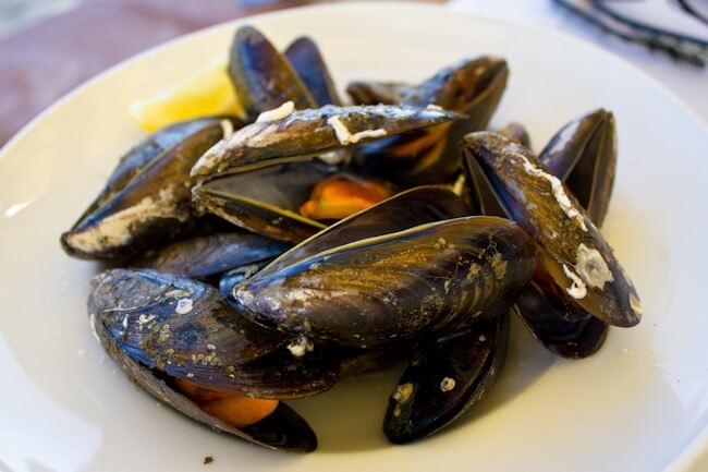 Still not a fan of mussels but they look pretty!
