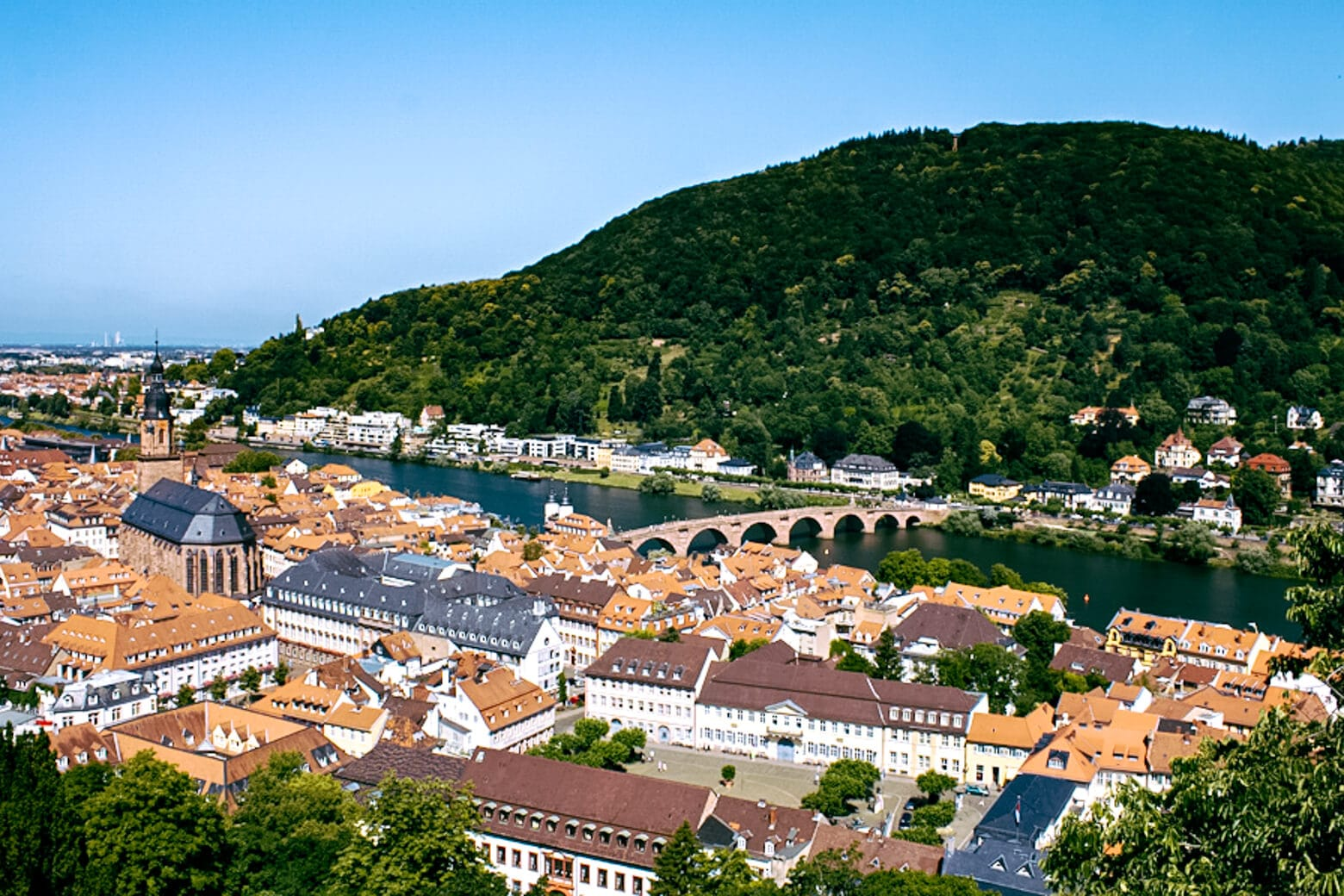 Views from Heidelberg Castle