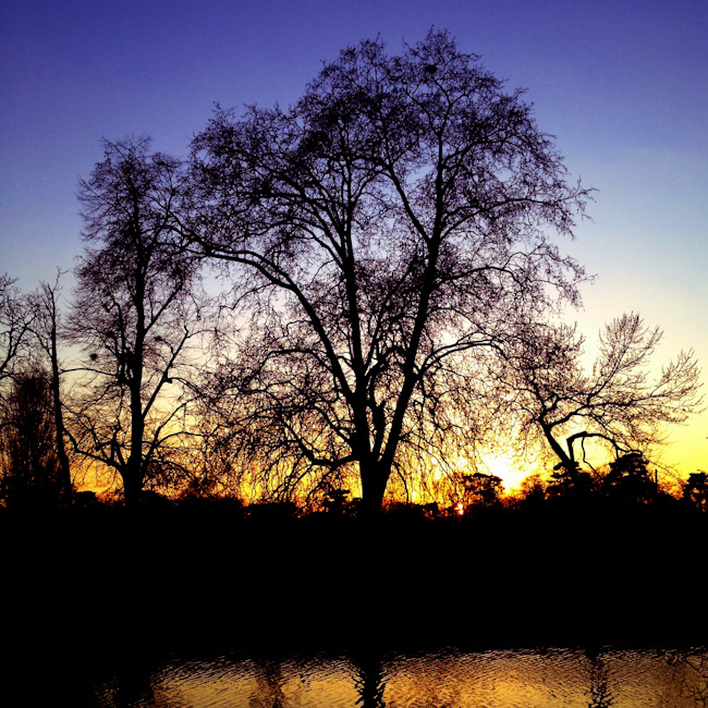Bois de Boulogne Sunset - Paris, France