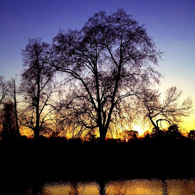 Bois de Boulogne Sunset - Paris, France