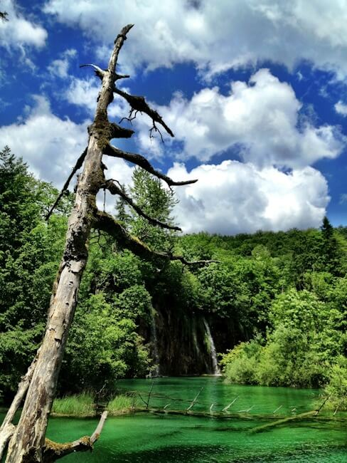 Green Lakes in Croatia