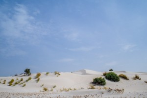 Spiaggia delle Dune Sardinia