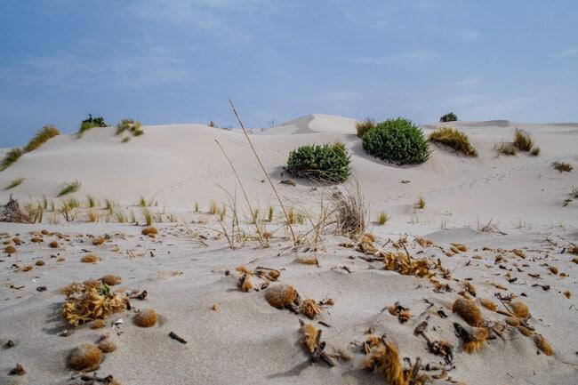 Spiaggia delle Dune o delle Sabbie Bianche