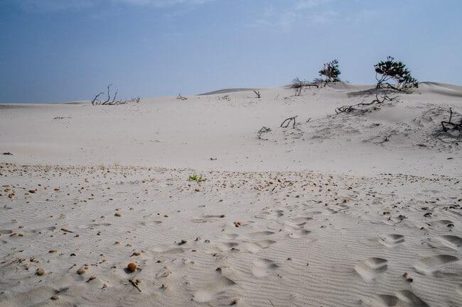 Spiaggia delle Dune - Dune Beach
