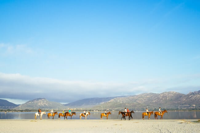 Horse Riding in San Teodoro