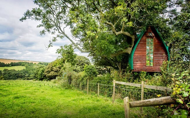 Treehouse in Cornwall