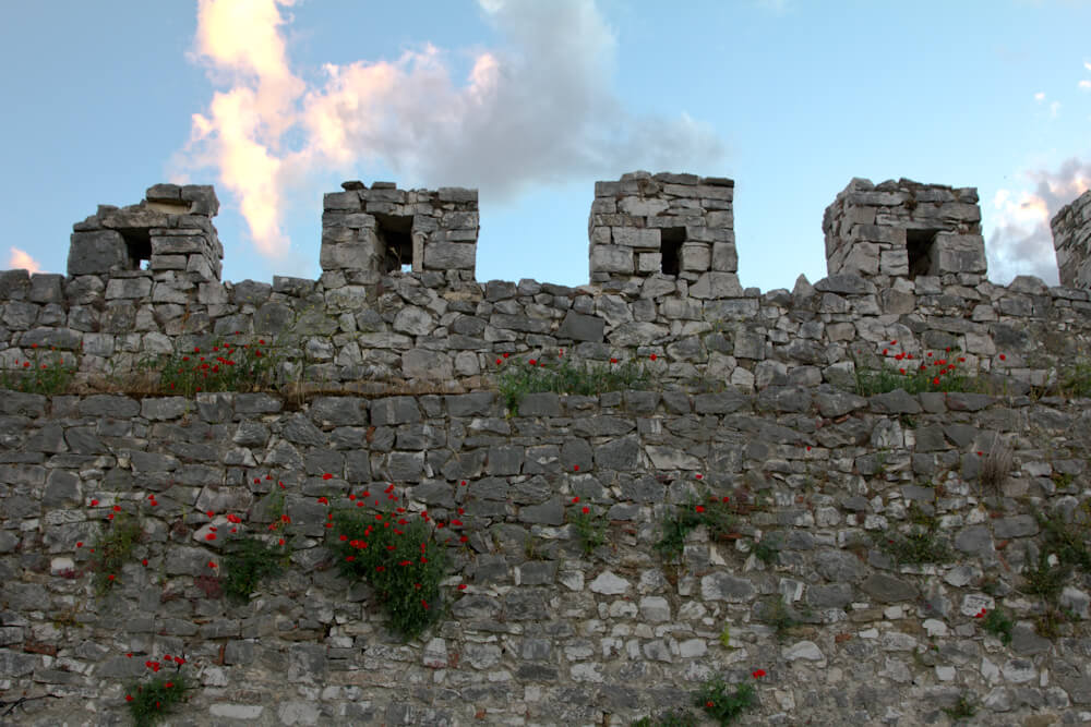 Berat Castle Walls with Poppies