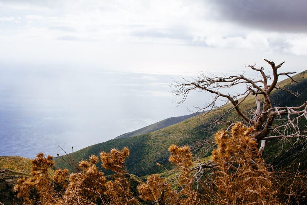 Llogara Pass on the Albanian Coast