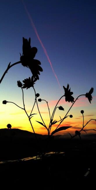 Sunset in Berat