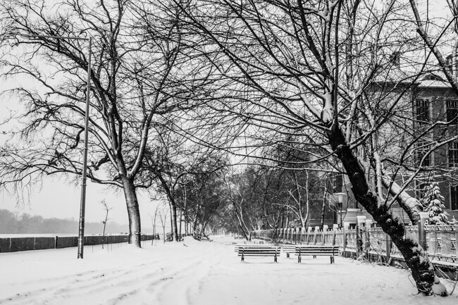 Blanket of Snow by the Tisza River