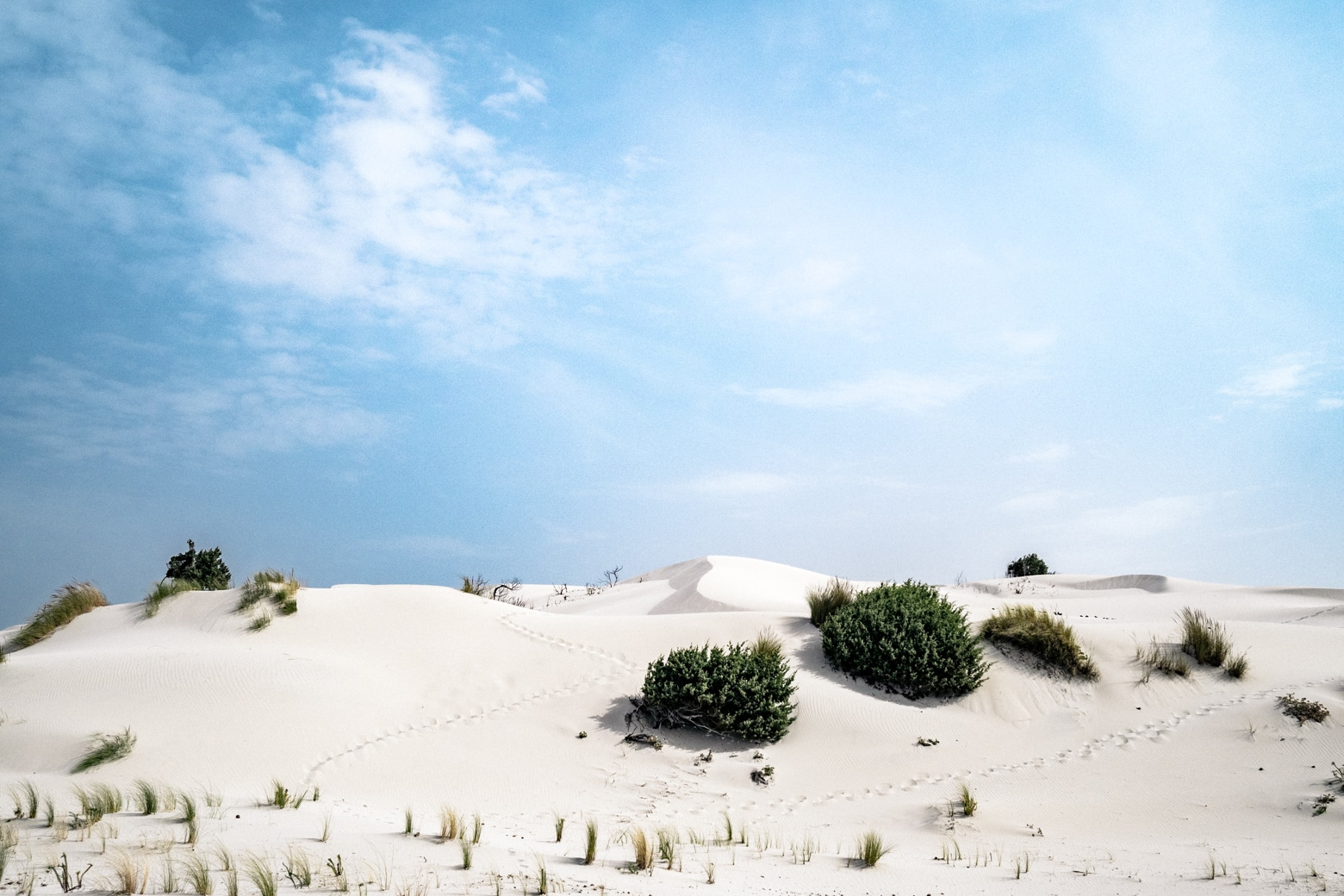 Porto Pino Sand Dunes and Blue Skies