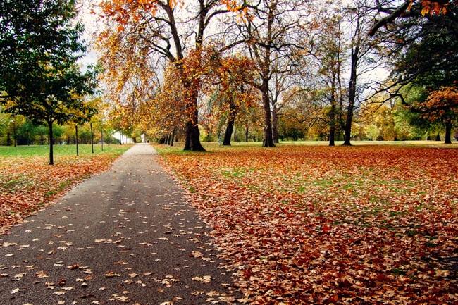 London Colours in Autumn