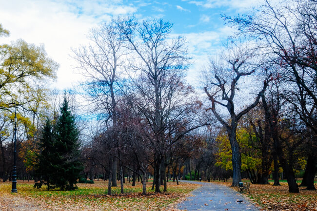 Peaceful paths in Margaret Island