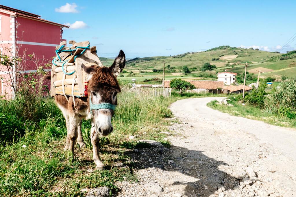 Traffic on the Via Egnatia